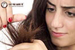 Chăm sóc tóc thế này mới chuẩn đúng cách!